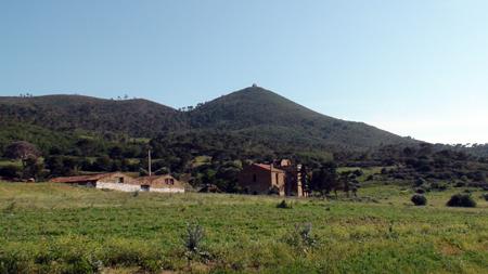 foncier algérie