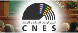 Pouvoir d'achat : Le CNES tire la sonnette d'alarme