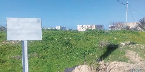 Ouargla: 1500 lots de terrain attribués prochainement aux citoyens